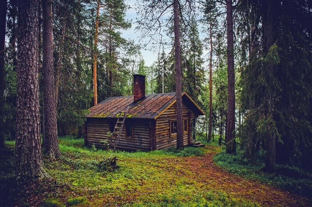 gammel Bjælkehytte placeret dybt inde i skoven